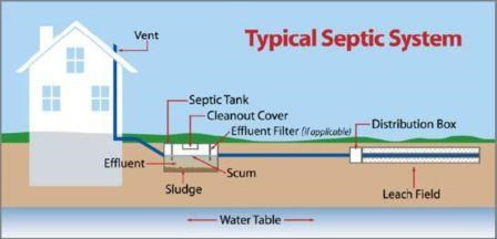 Septic tanks netregs environmental guidance for your for How to design a septic system