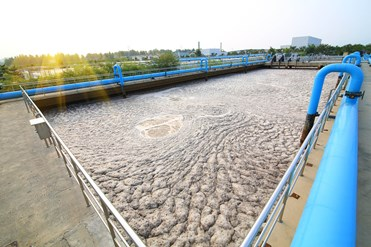 Waste and sewage businesses: disposal of sewage sludge